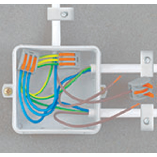Wago 222 Verbindungsklemme wieder lösbar, 2 Klemmstellen, 2 x 0,08 - 2,5 mm² im 50er Pack