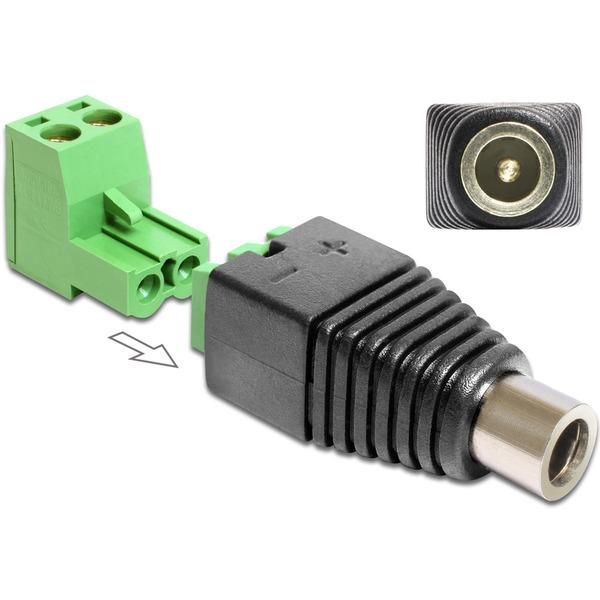 Delock Adapter Terminalblock > DC 2,5 x 5,5 mm Buchse 2-teilig
