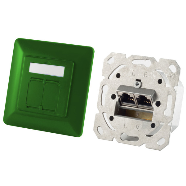Shiverpeaks Netzwerkdose BASIC-S, Cat. 6A, 2x RJ45-Buchse, grün (RAL 6032)