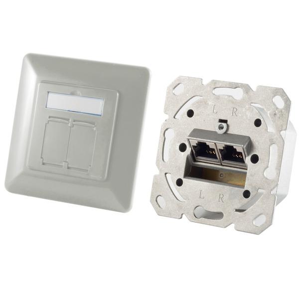 Shiverpeaks Netzwerkdose BASIC-S, Cat. 6A, 2x RJ45-Buchse, silber-grau