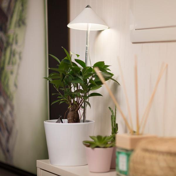 7-W-LED-Pflanzenleuchte mit Zuleitung und Schalter, weißer Schirm
