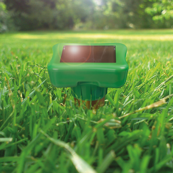 Gardigo Solar Maulwurf-Ameisen-Vertreiber Dual mit Erdlochbohrhilfe
