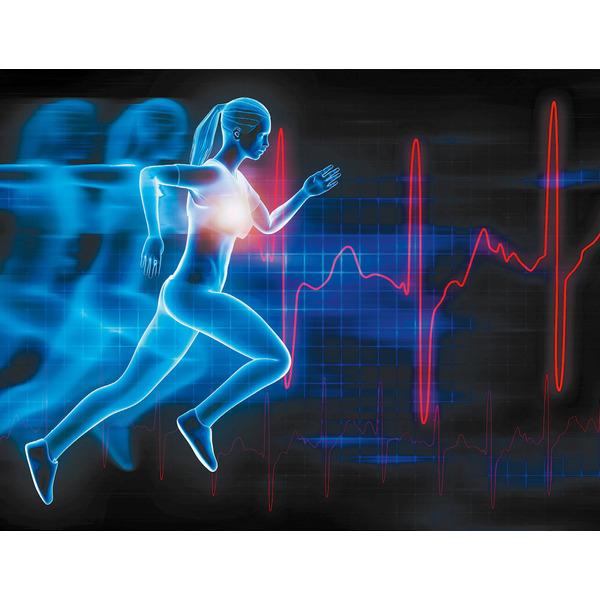 Bioelektronik II - Physiologie, Fitness und Stress