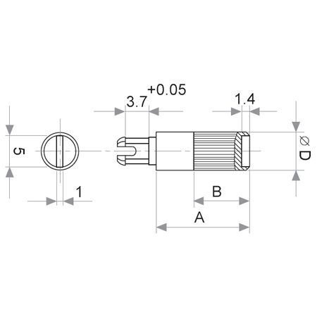 Kunststoff-Steckachse, Abmessungen: Durchmesser 6 x 16,8 mm