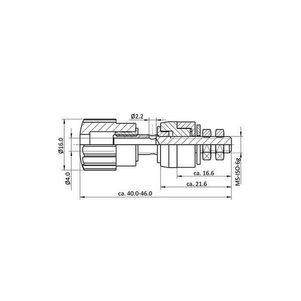 econ connect Polklemme AK7SW, 25 A, 4 mm, schwarz