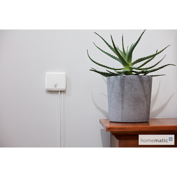 Homematic IP Smart Home Access Point HMIP-HAP