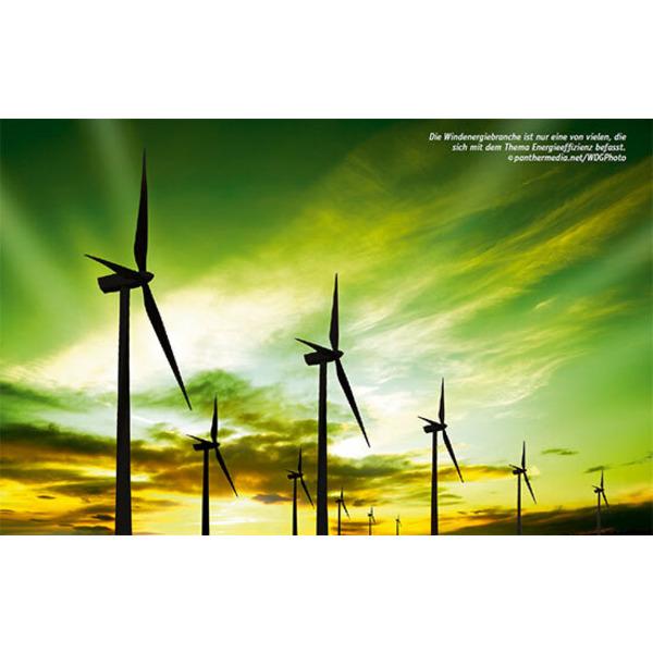 Nachhaltig und effizient - Energieeffizienz als Beruf (ung)