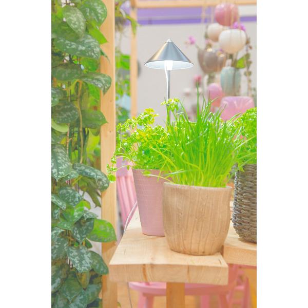 7-W-LED-Pflanzenleuchte mit Zuleitung und Schalter, grauer Schirm