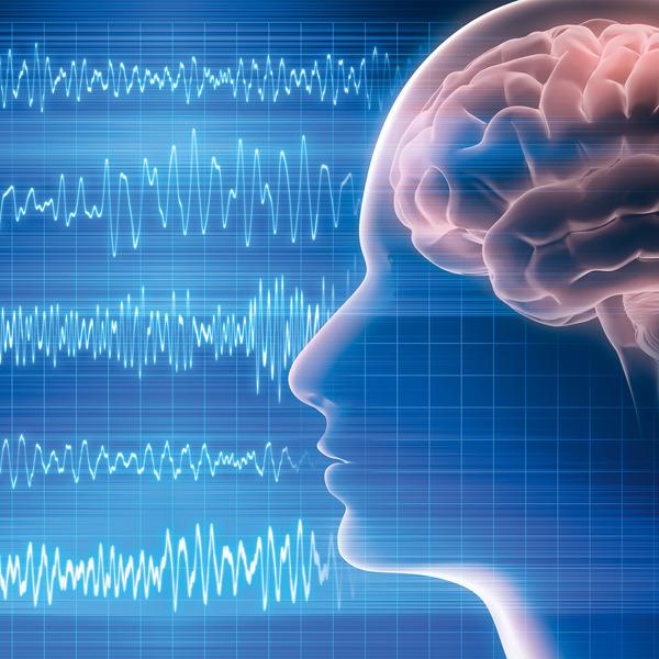 Bioelektronik VI - Gehirnfunktionen entschlüsseln