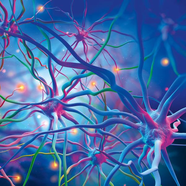 KI-Praxis II - Neuronale Netze - Aufbau und Training